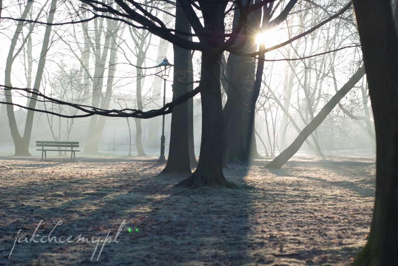 ławeczka w parku widok4