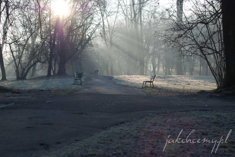 ławeczka w parku widok5
