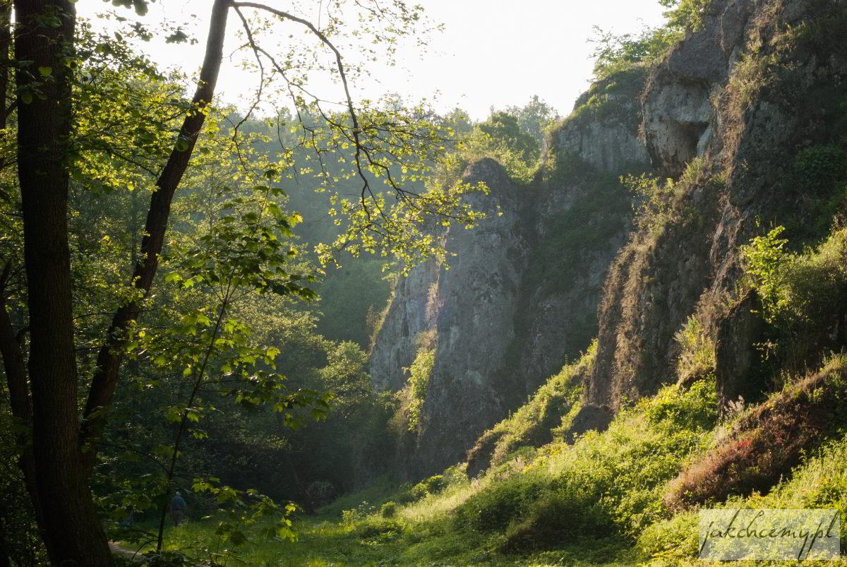 Dolina Mnikowska skałki