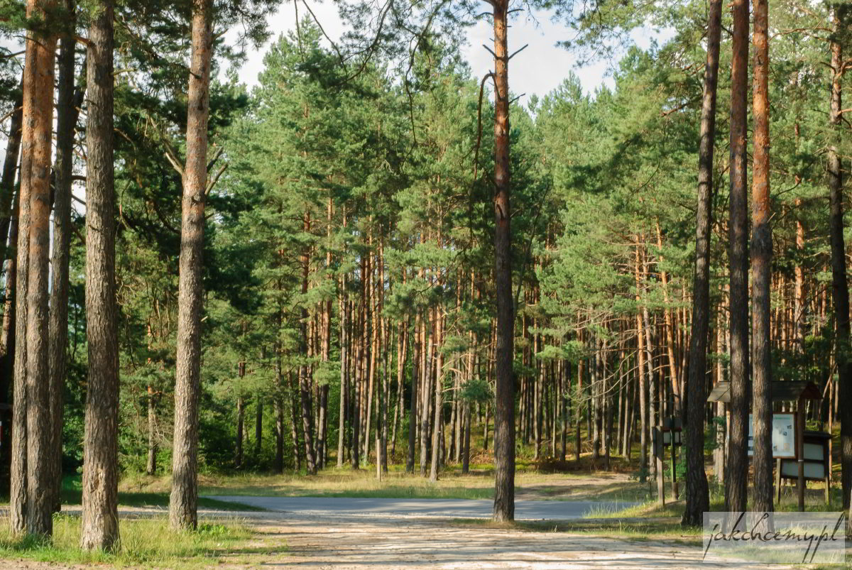 Czartowe Pole