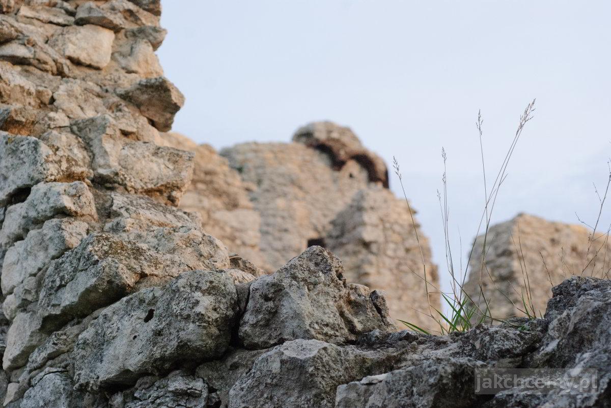 zamek mury trawa