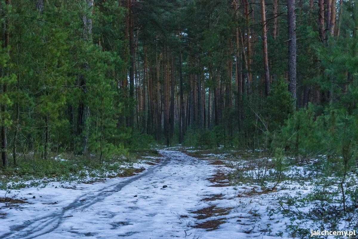 Topniejący śnieg