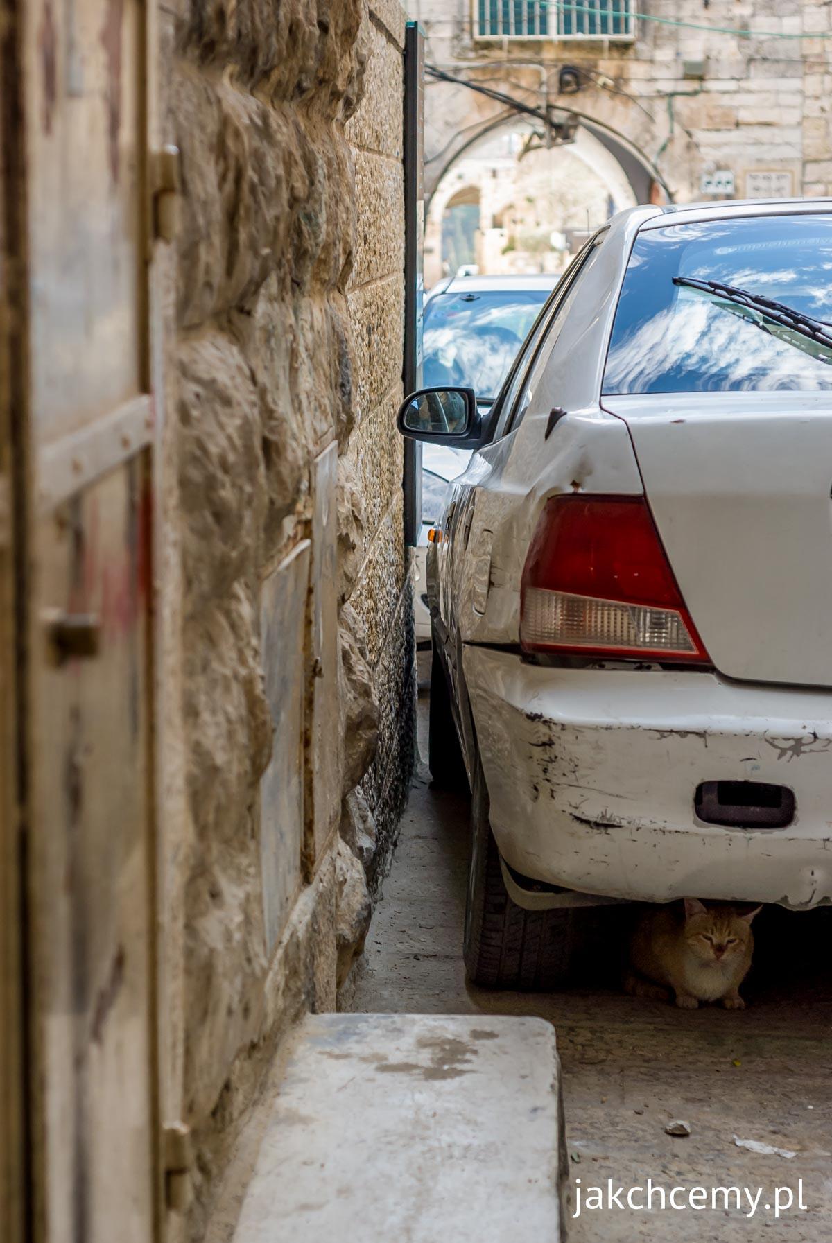 Jerozolima, parkowanie i kotek