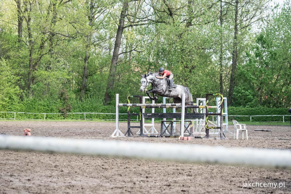 Spacerowa majówka z21 konie