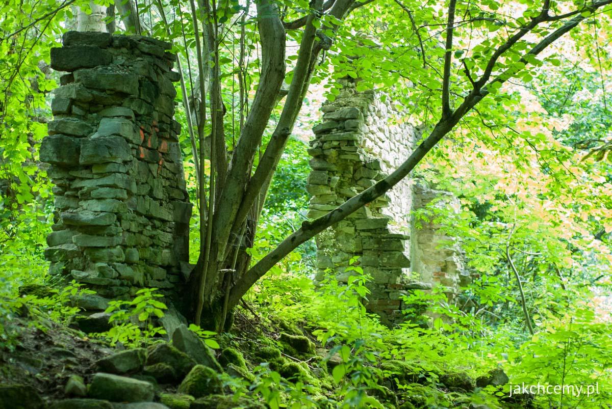 Czartowe Pole ruiny