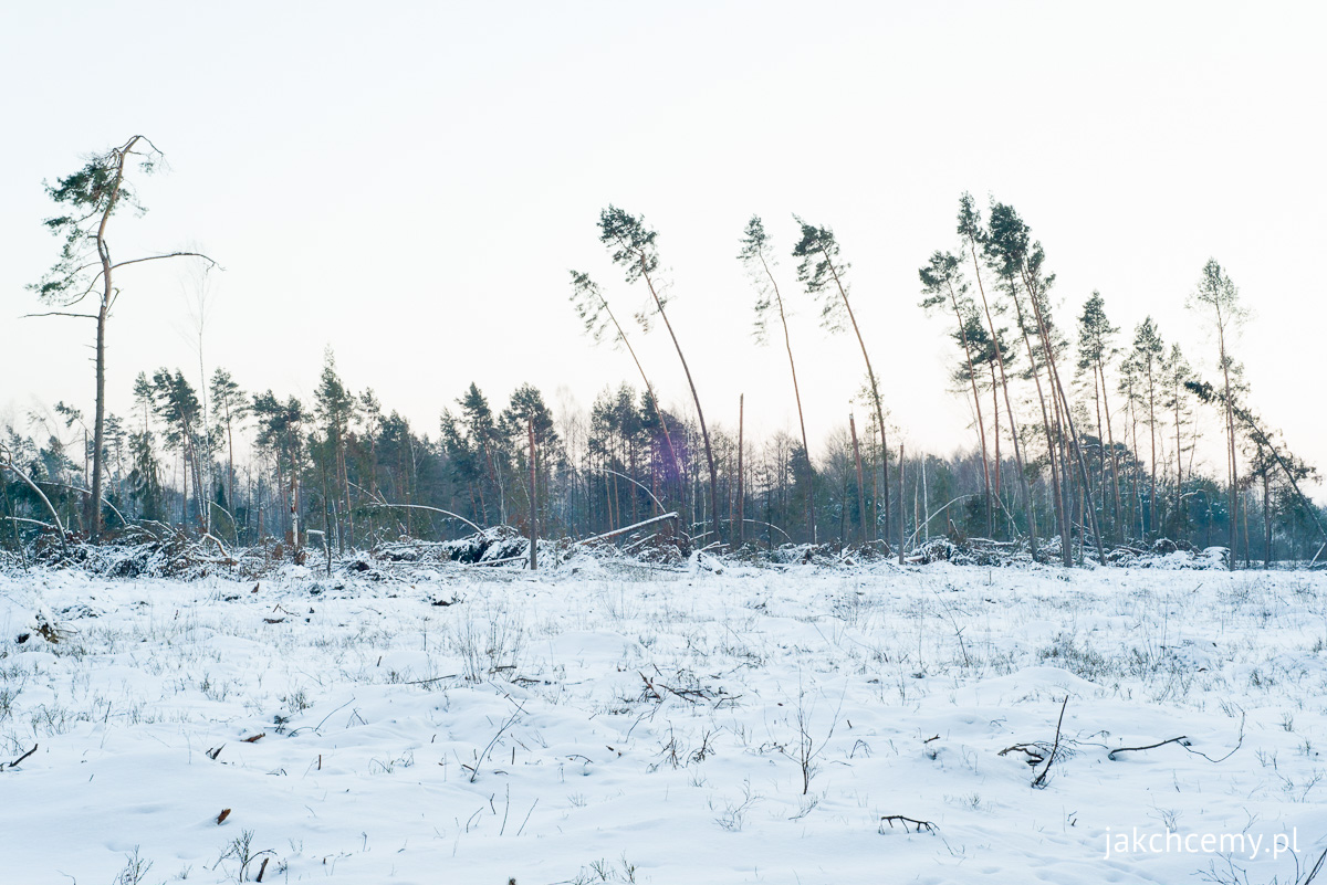 zimowe ferie part1 7