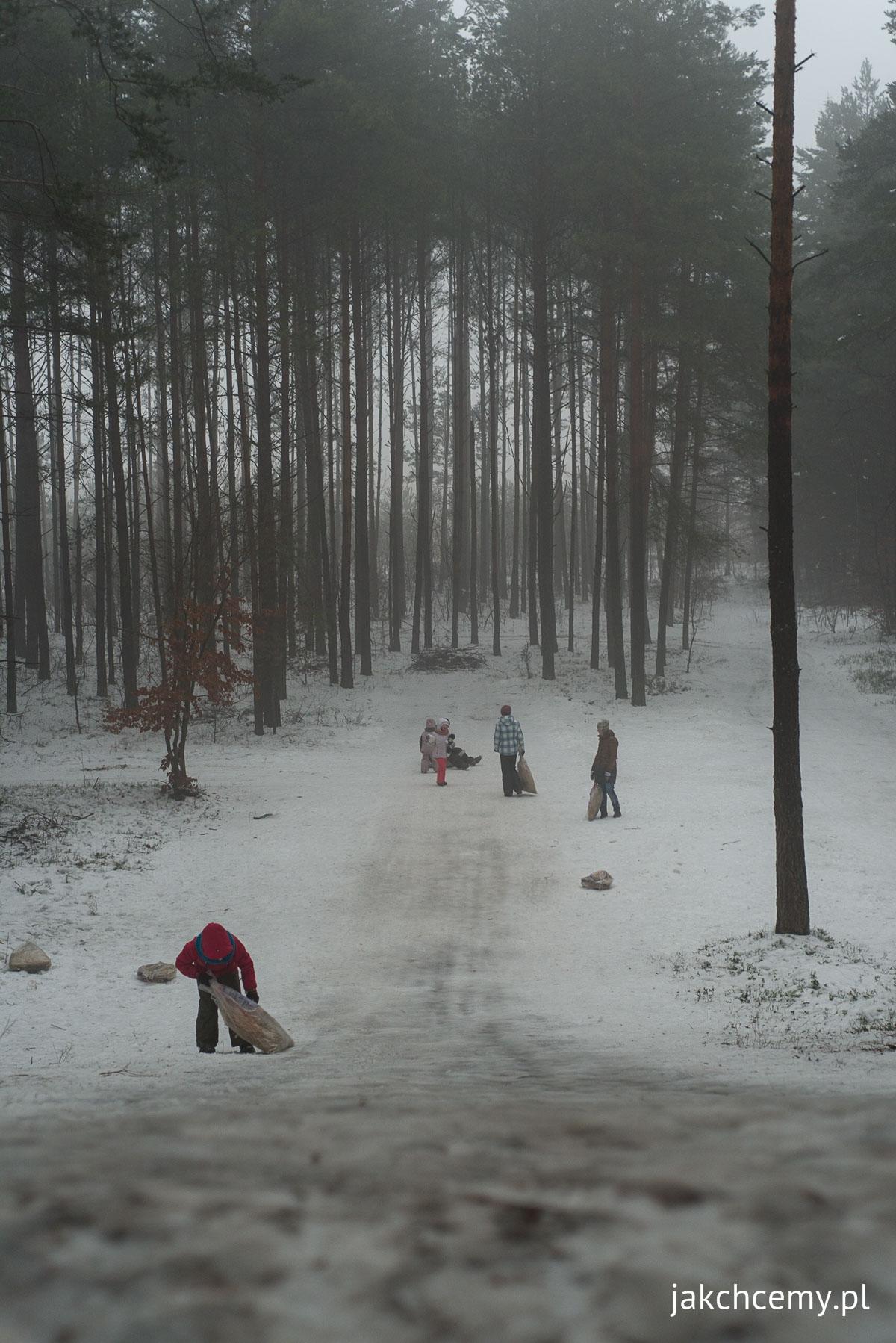 las, śnieg, ferie 8
