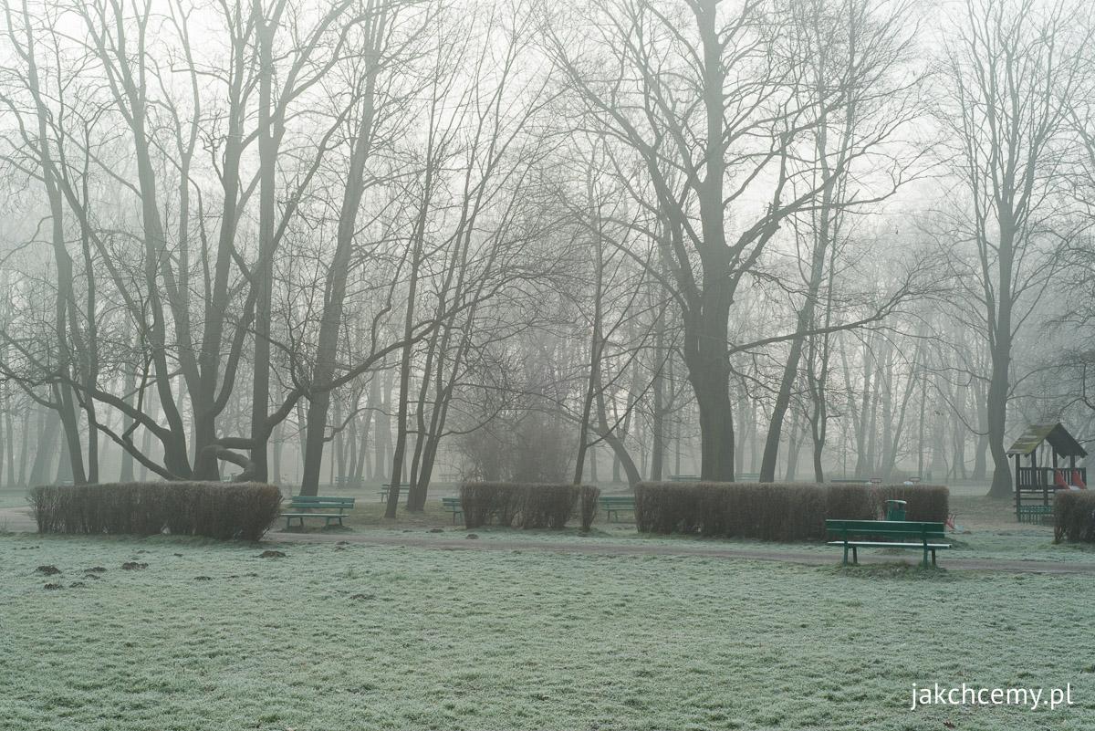mglisto park decjusza szron prawie wiosna 1