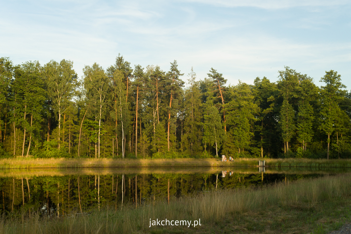 piknik Rapy Dylańskie staw las