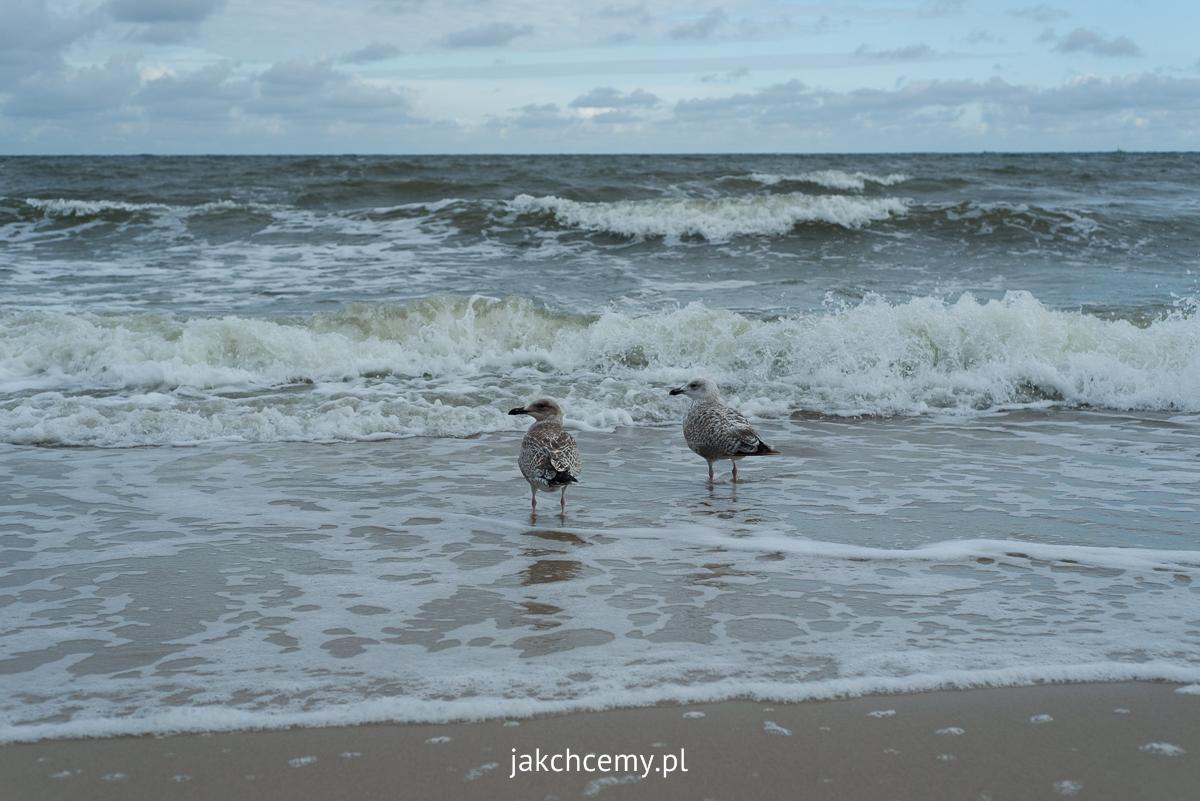 wakacje Ustronie Morskie