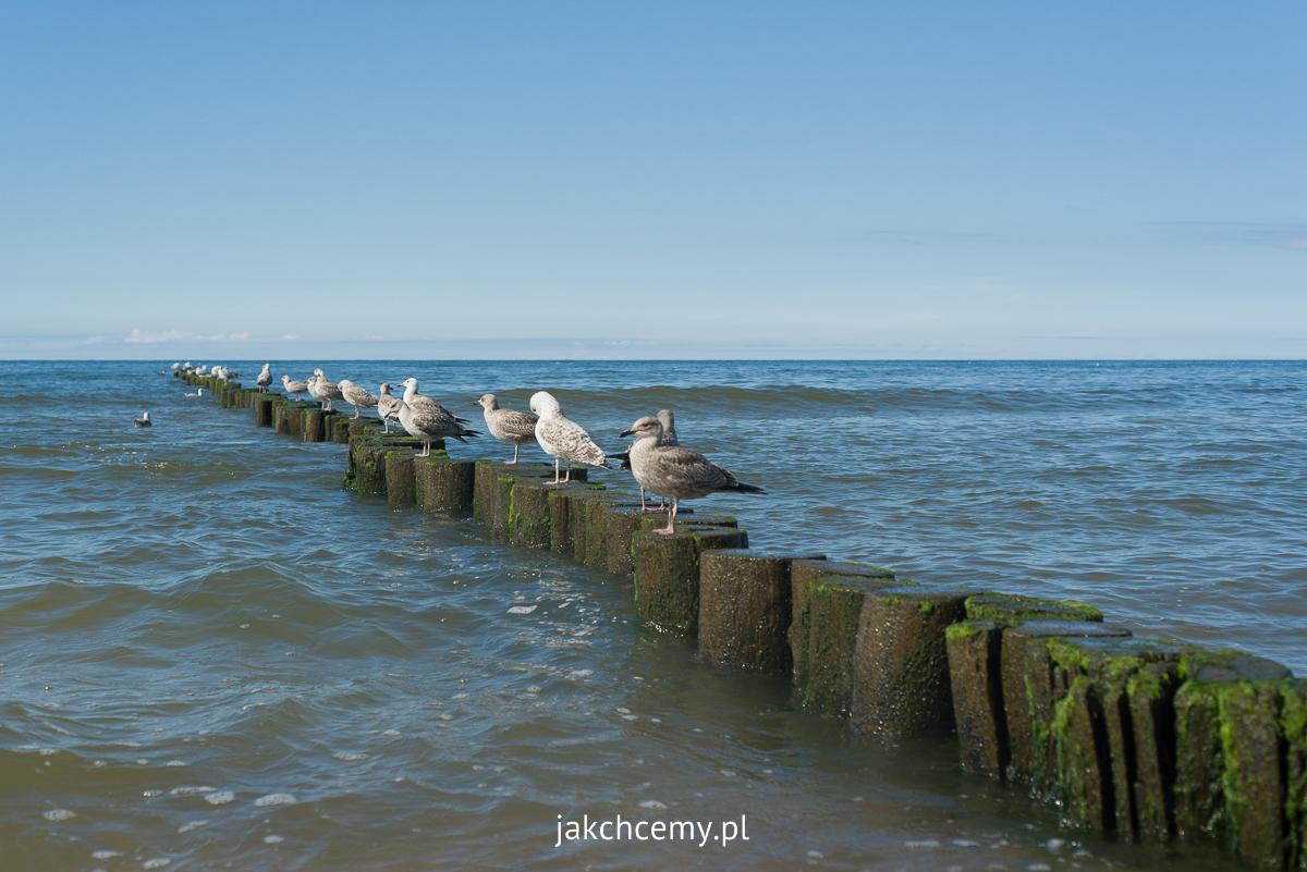 spokojne morze w Ustroniu